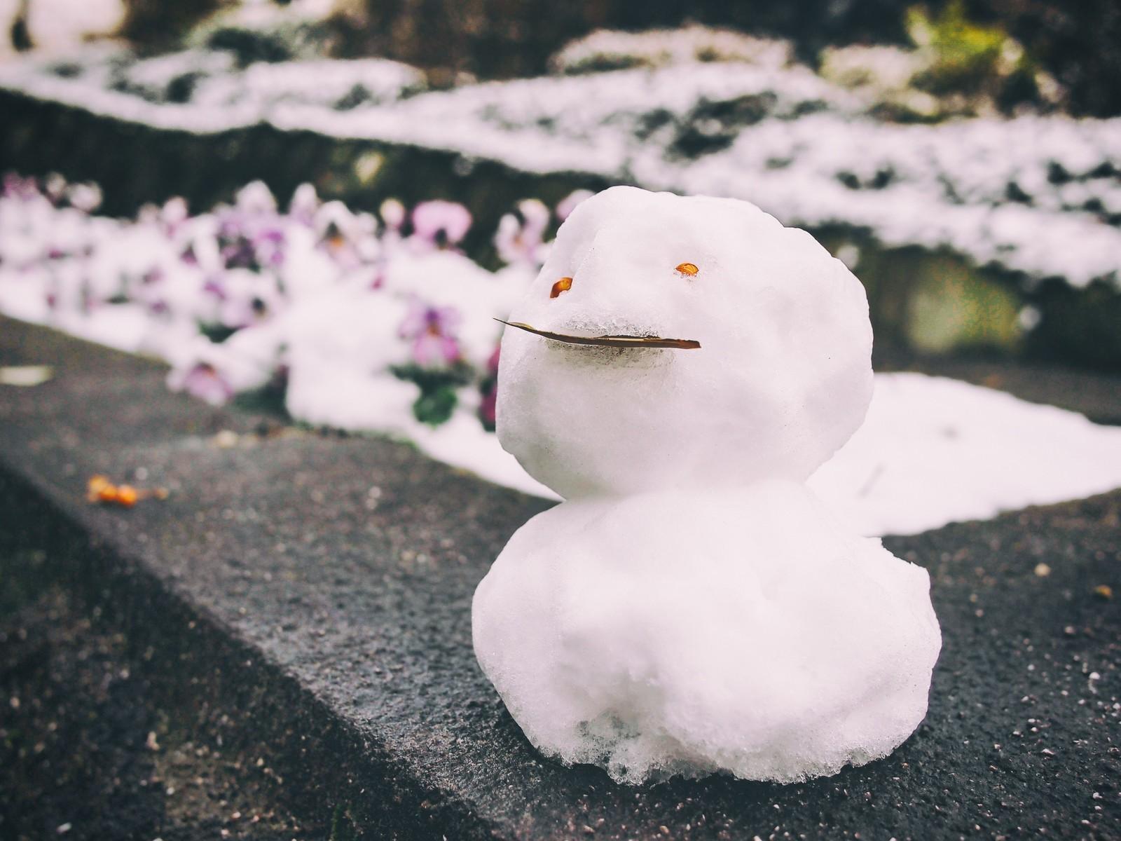 雪だるま式に増えて行くチャットレディのお給料!